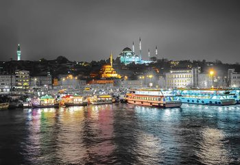 Istanbul From The River Wallpaper Mural