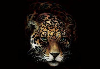 Jaguar Wallpaper Mural