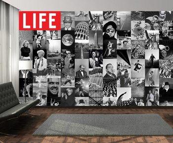 Life - black and white Wallpaper Mural