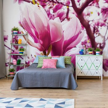 Magnolia Tree Wallpaper Mural