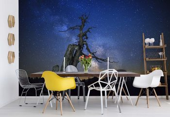 Milky Way Wallpaper Mural