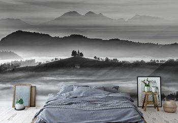 Morning Rays Wallpaper Mural