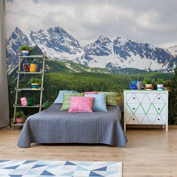 Mountains Alps Wallpaper Mural