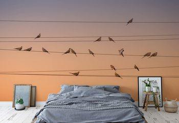 Music Of Light Wallpaper Mural