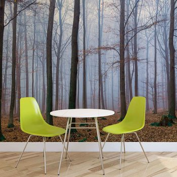 Nature Wood Forest Wallpaper Mural