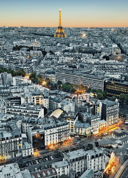 PARIS AERIEL VIEW Wallpaper Mural