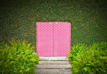 Pink Brick Door Wallpaper Mural