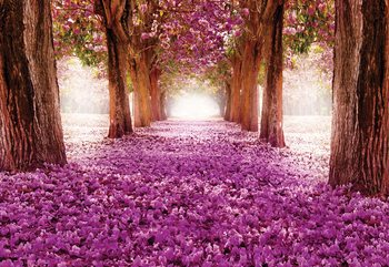 Pink Trees Path Wallpaper Mural