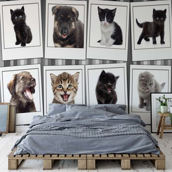 Puppies And Kittens Wallpaper Mural