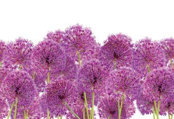 Purple Flowers Wallpaper Mural