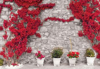 Red Flowers Stone Wall Wallpaper Mural