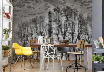 Reflection Wallpaper Mural