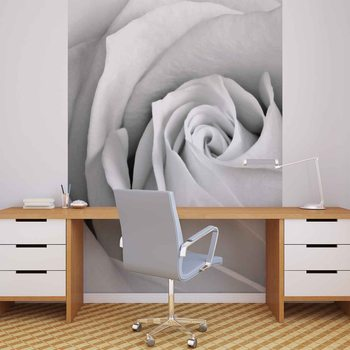 Rose Flower Wallpaper Mural