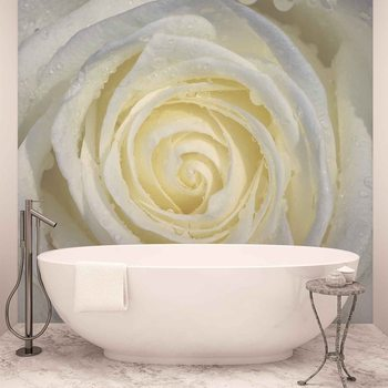 Rose Flower White Wallpaper Mural