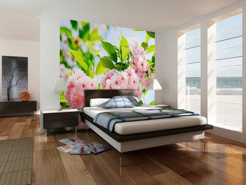 SAKURA BLOSSOM Wallpaper Mural