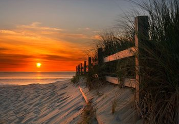 Sandbridge Sunrise Wallpaper Mural
