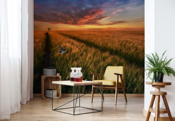 Somewhere At Sunset Wallpaper Mural