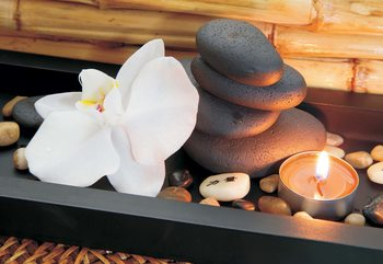 Spa Pebbles And Flowers Wallpaper Mural