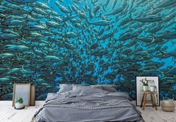 Splitted School Of Jackfish Wallpaper Mural