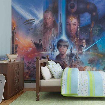 Star Wars Young Anakin Queen Amidala Wallpaper Mural