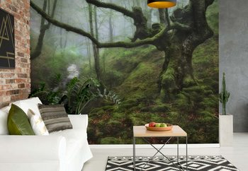 The Enchanted Forest Wallpaper Mural