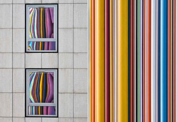 The Gray And The Colors Wallpaper Mural