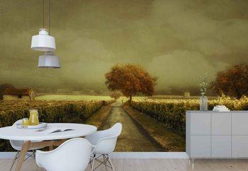 Through The Vineyard Wallpaper Mural