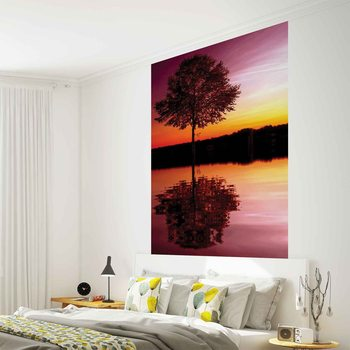 Tree Lake Reflection Sunset Nature Wallpaper Mural