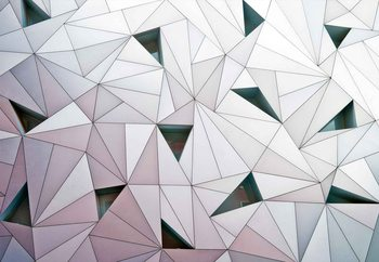 Triangulation Wallpaper Mural