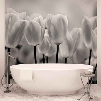 Tulip Flowers Wallpaper Mural