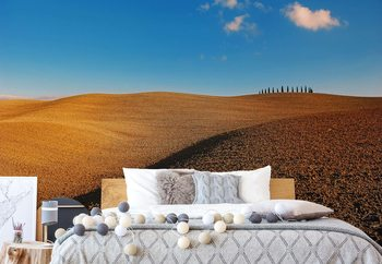 Tuscan Fields Wallpaper Mural