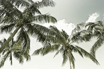 Wallpaper Mural Vintage Palm Trees