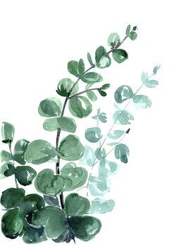 Wallpaper Mural Watercolor eucalyptus bouquet