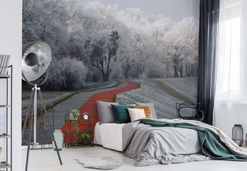 Winter Afternoon Wallpaper Mural