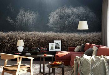 Winter Field Wallpaper Mural