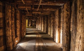 Wood Tunnel Mine Wallpaper Mural