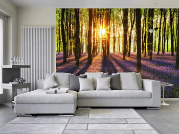WOODLAND AT DAWN Wallpaper Mural