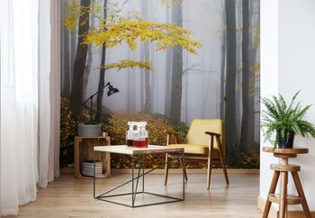 Yellow Leaves In The Forest Wallpaper Mural