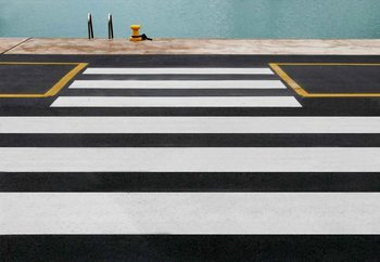 Zebra Crossing To The Sea Wallpaper Mural