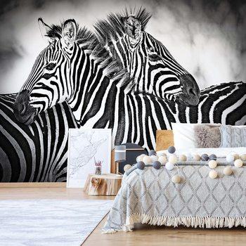 Zebras Black And White Wallpaper Mural