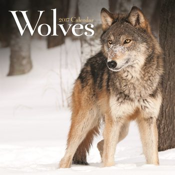 Calendar 2021 Wolves
