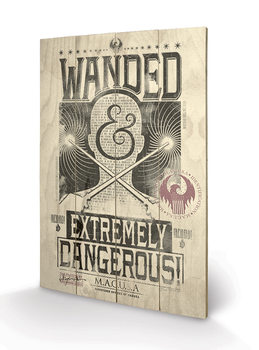 Fantastic Beasts And Where To Find Them - Extremely Dangerous Wooden Art