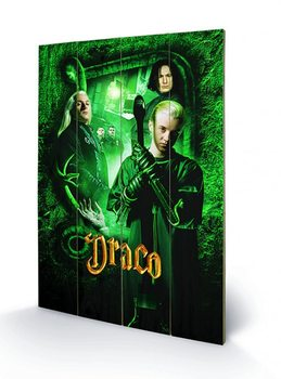 Harry Potter - Draco Wooden Art