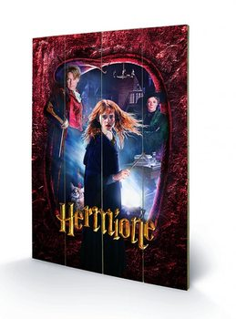 Harry Potter - Hermione Wooden Art
