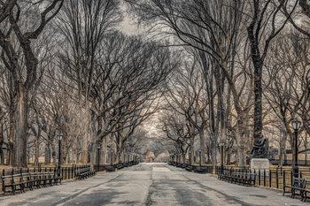 Assaf Frank - New York Central Park Affiche