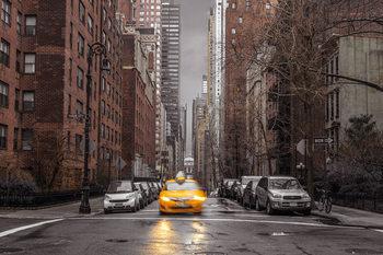 Assaf Frank - New York Taxi Affiche