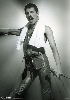 Queen - Freddy Mercury Affiche
