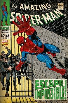 Spiderman - Escape Impossible Affiche