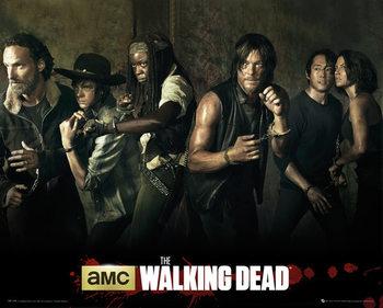 The Walking Dead - Season 5 Affiche
