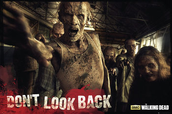 The Walking Dead - Zombies Affiche
